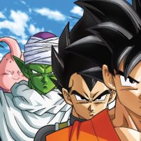 Dragon Ball Z Fans Voice Concerns About 30th Anniversary Set