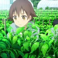 Anime Studio Asahi Production Forces Animators to Work on Farm