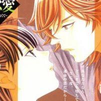 Tales of Teen Love, Manga Style