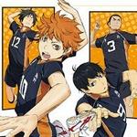 Sentai Filmworks Adds Haikyuu! Anime