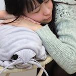 Giant isopod plush toy released