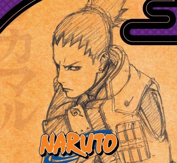 Anime to Adapt Naruto Epilogue Novels