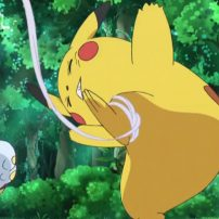 Pikachu Busted Hopping the White House Fence Again
