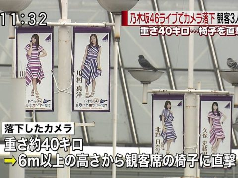 Nogizaka46 Fans Injured by Falling Camera at Concert