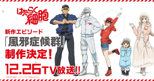 Cells at Work Anime Gets New Episode, Video Game