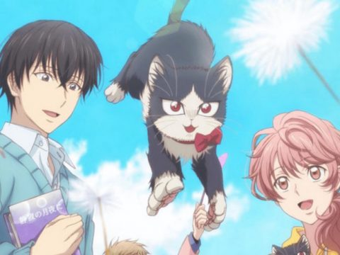 Voice Actor Kensho Ono Promotes Cat Anime at Cat Café