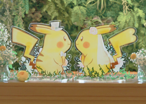 pokémon wedding