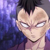 Demon Slayer: Kimetsu no Yaiba Anime Reveals More Footage