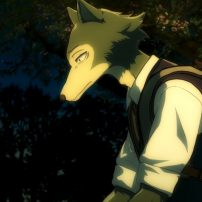 BEASTARS Anime Goes Wild in Latest Trailer