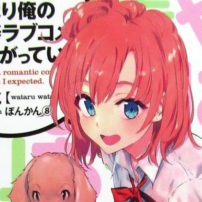My Youth Romantic Comedy is Wrong's Final Light Novel Delayed Indefinitely
