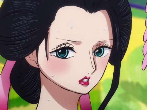 You Should Start Watching the One Piece Anime at Episode 892